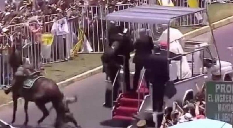 لحظة اصطدام سيارة بابا الفاتيكان بحصان.. وسقوط إمرأة