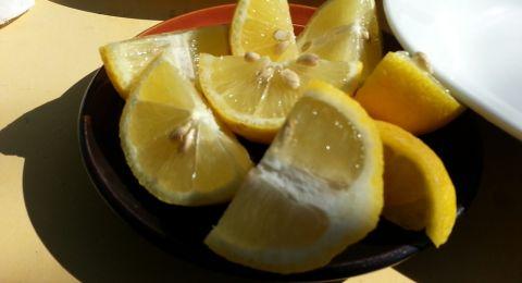 6 اطعمة غنية بالكالسيوم أكتر من اللبن