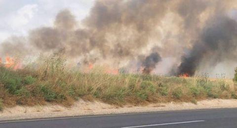 معاريف: حرائق الغلاف أتت على 12 ألف دونم محاصيل ونصف المحميات
