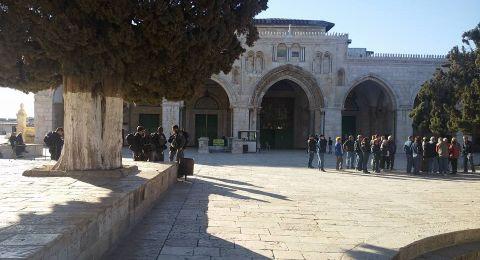 الاوقاف تنظر بخطورة بالغة لحفريات أسفل المتحف الاسلامي في المسجد الاقصى