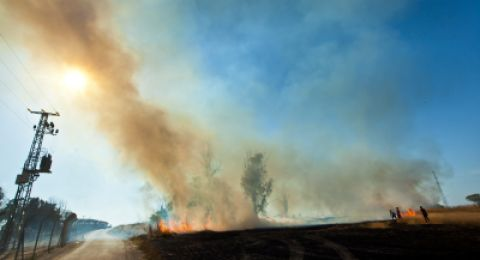 اسرائيل تدعي أن الفلسطينيين يستخدمون الطيور لإشعال الحرائق
