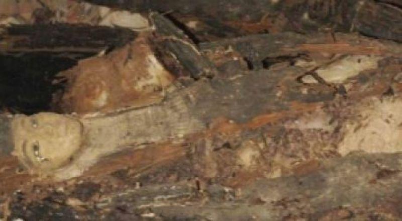 اكتشاف كبير في مصر يفشي