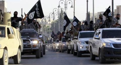 25 ألف داعشي في الموصل!