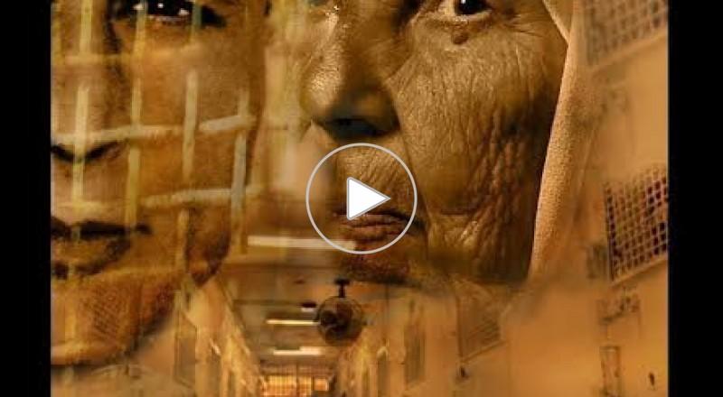 عرضت هيئة شؤون الأسرى والمحررين بالتعاون مع نادي الأسير الفلسطيني ومفوضية الأسرى في غزة ومحافظة رام الله والبيرة، عصر اليوم الثلاثاء، في قاعة الهلال الأحمر الفلسطيني بالبيرة، فيلم مؤبد مفتوح الذي يوثق مسيرة المناضل كريم يونس، عميد الأسرى الفلسطينيين في سجون الاحتلال الذي مضى على اعتقاله أكثر من 34 عاما، وذلك بحضور ذوي الأسير وعشرات الفلسطينيين من الداخل المحتل، إضافة لشخصيات رسمية وشعبية. حيث الفيلم مدته ساعة من انتاج مفوضية الأسرى والمحررين بحركة فتح في غزة، يتحدث عن الحياة الشخصية والنضالية للأسير كريم يونس، والذي قضى 34 عاما من عمره داخل سجون الاحتلال الإسرائيلي ومحكوم بالسجن مدى الحياة، وهو انموذج لمعاناة أسرانا الأبطال خلف القضبان وتضحياتهم المستمرة من أجل شعبهم وقضيتهم. وقال نديم يونس شقيق الأسير قبيل عرض الفيلم، أن الفيلم يتعرض لمأساة كريم يونس عميد الأسري الفلسطينيين الذي تم الزج به في السجن منذ 34 عاما، وكان عمره وقتها العشرين والان صار عمره 53 عاما، وكان لا يزال طالبا بالجامعة، لكنه استطاع وهو بالسجن ان ينهي دراسته الجامعية والدراسات العليا ويؤلف الكتب ويصبح نموذجا وقدوة للشباب الفلسطيني. وقال عضو اللجنة المركزية لحركة فتح عزام الأحمد، أن كريم يونس سيبقى من عظماء من ضحوا لأجل هذا الوطن، وأن قضية الأسرى القدامى وعلى رأسهم كريم يونس ستبقى أولوية سياسية بامتياز في أي تسوية أو مفاوضات مقبلة. وعرض الفيلم مشاهد مؤثرة لأسرة كريم وخاصة والدته العجوز صبحية وهبي التي تعيش علي أمل الافراج عنه وعودته اليها، والتي تتحدث وحزنا دفينا يطل من عينيها لكنها تخفي دموعها وتحاول ان تبدو قوية وهي تقول ربنا قادر علي كل شئ، وتخشي ان تموت قبل ان تكتحل عينيها برؤيته مثلما توفي ابيه يوم اعتقاله، ويتحدث في الفيلم اشقائه الذين ينتظرون عودته واصدقائه وشخصيات فلسطينية. وخلال العرض تم تكريم والدة الأسير كريم يونس من قبل الهيئة ومحافظة رام الله وحركة فتح.