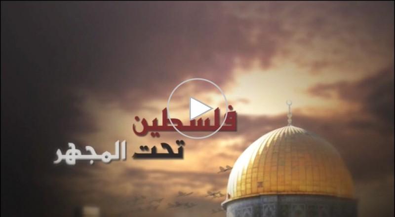 فلسطين تحت المجهر - غزة تعيش