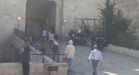 113 مستوطنا يقتحمون الاقصى والشرطة الاسرائيلية تكثف من تعزيزاتها في القدس