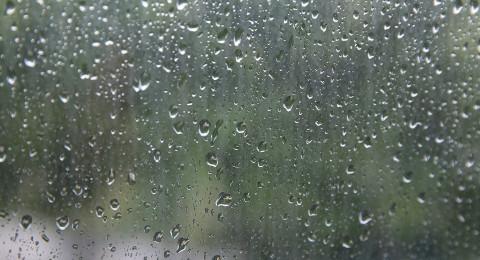 وأخيرًا .. مطر قادم في الأيام القريبة، لوقت قصير