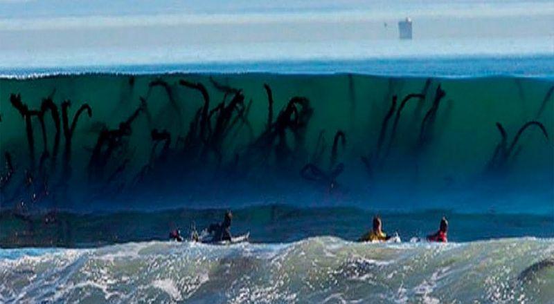 أكثر الشواطئ المرعبة في العالم