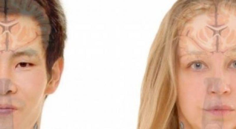 هل يختلف دماغ الرجل عن دماغ المرأة؟