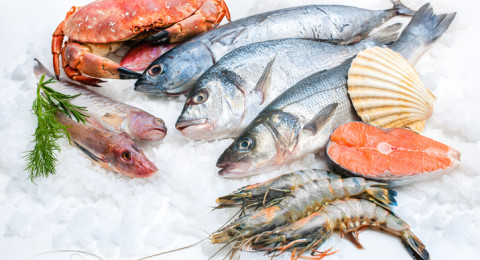 أثر تجميد السمك على فوائده الغذائية