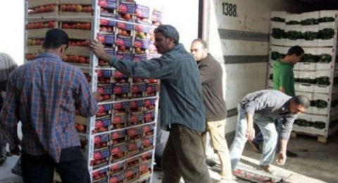 إندونيسيا تقرر استقبال جميع البضائع الفلسطينية دون ضرائب
