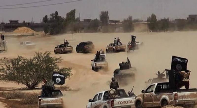 سوريا: التحالف يقتل 20 مدنيًا في مجزرة جديدة للتحالف جنوبي الحسكة