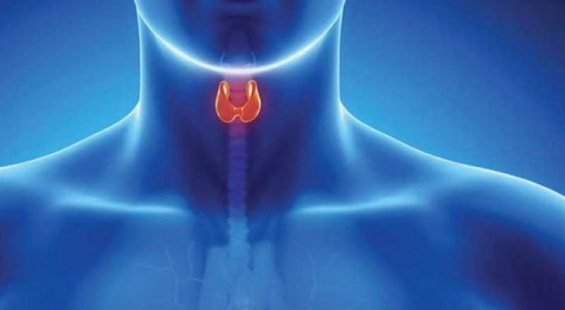 وصفة طبيعية تساعد في علاج اضطرابات الغدة الدرقية