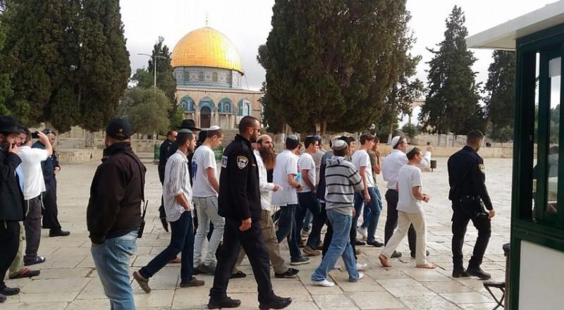 91 مستوطنًا وطالبًا يهوديًا يقتحمون الأقصى