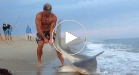 بالفيديو: سوبرمان يصيد سمكة قرش بيديه
