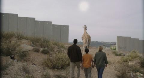 giraffada - جيرافادا