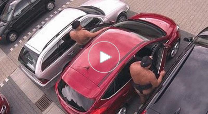 سومو عمالقة يقتحمون سيارة فورد دون خدشها