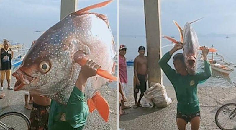 فلبيني يصطاد سمكة عملاقة