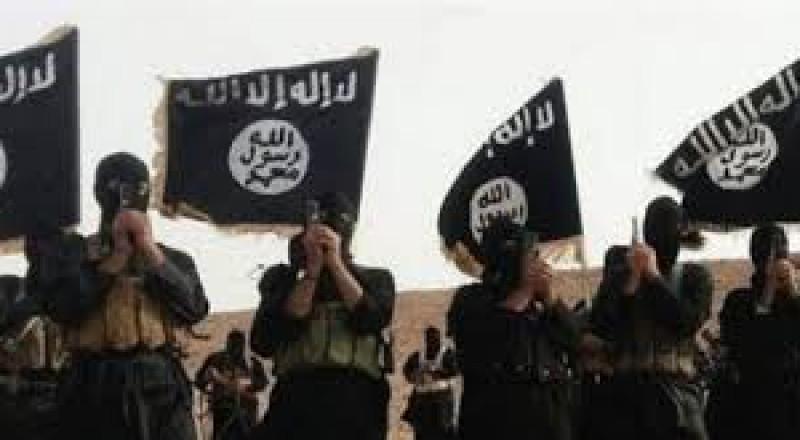 مقتل العشرات من عناصر تنظيم