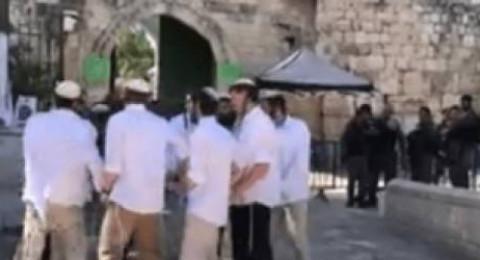 مستوطنون يؤدون رقصات استفزازية في باحة باب الاسباط