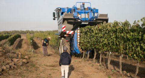 العمال الأجانب في اسرائيل يحوّلون الى بلادهم مليارات الشواقل