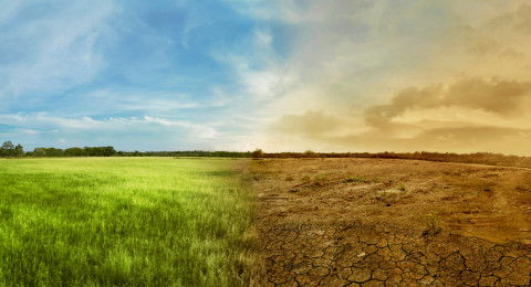 الرطوبة تشارك الاحتباس الحراري في تهديد البشرية