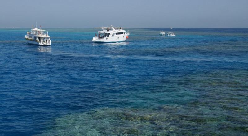 شركة سياحة وسفر إيطالية: السياحة فى البحر الأحمر تعود بقوة