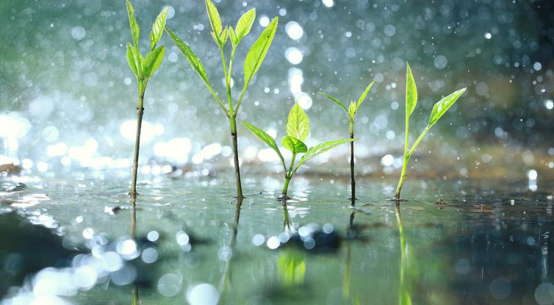 درجات الحرارة تنخفض وأمطار فوق مختلف المناطق