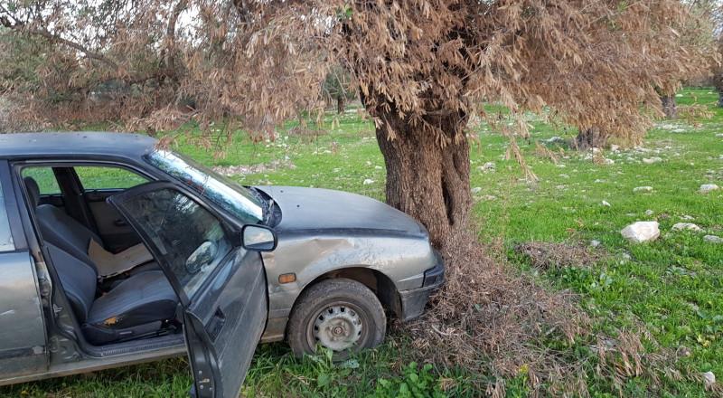 سرقا ابوكادو..واصطدما بشجرة واعتقلا