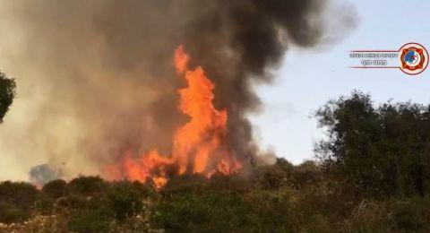 حريق ضخم يتوسع قرب دالية الكرمل