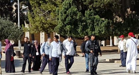 القدس: 89 مستوطنًا وطالبًا يهوديًا يقتحمون الأقصى