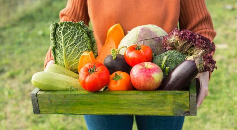 المبيدات تسبب العقم لدى النساء