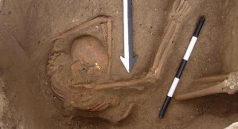 بعد تحليل عظام.. اللبنانيون يتحدرون من الكنعانيين