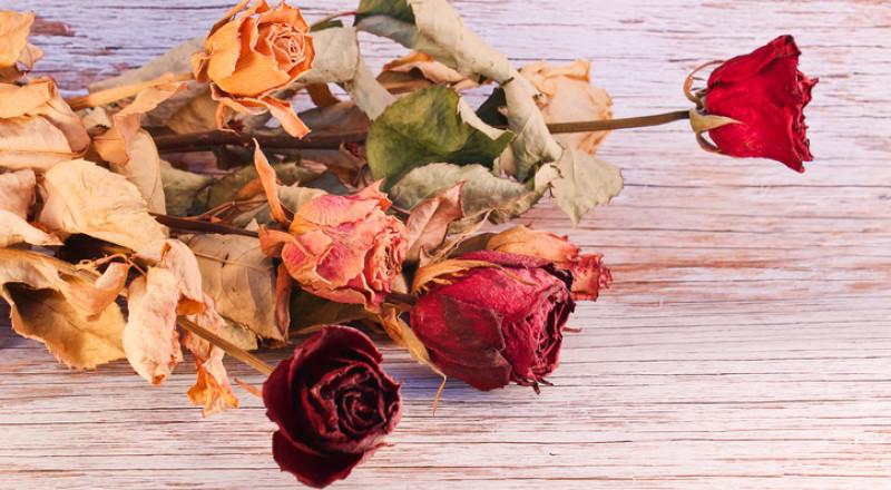 تدبير منزلي: الأزهار المجففة في تنظيف السجاد