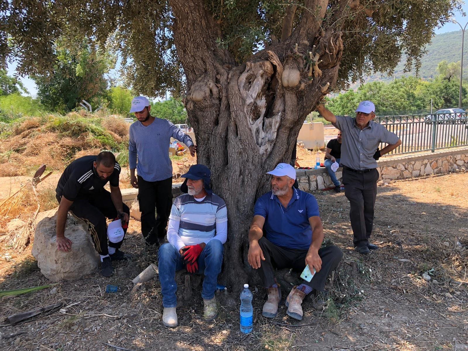 العشرات من أهالي مدينة حيفا وام الفحم يشاركون بترميم مقبرة القسام في حيفا-8