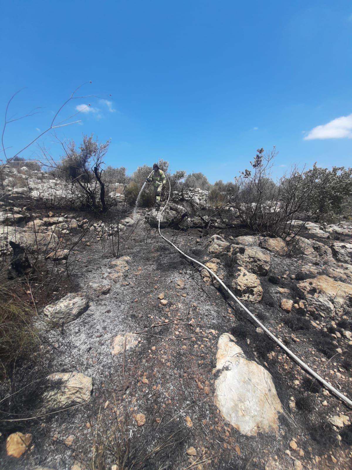 اندلاع حريق في كروم زيتون في باقة الغربية-0