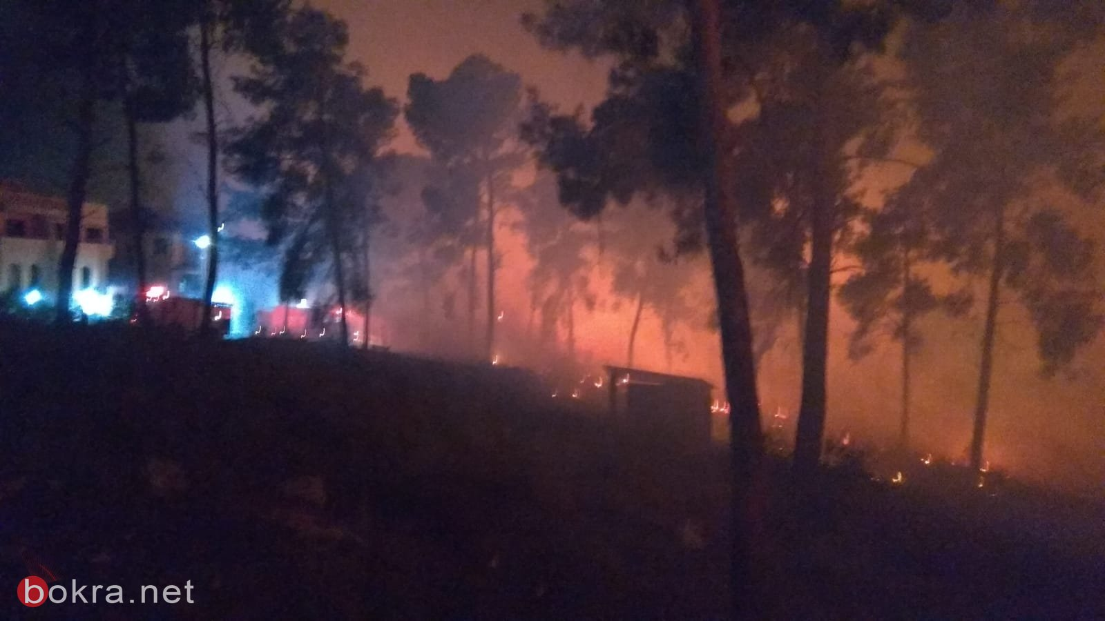 حريق هائل في الأحراش المجاورة للدحي واخلاء منازل-3