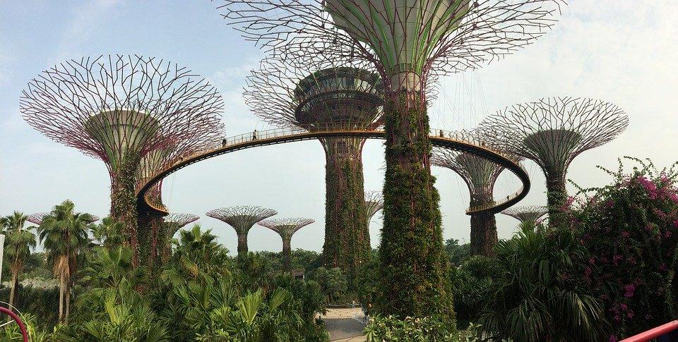 صور حدائق غريبة 784889025