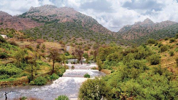 مناطق خضراء في السعودية