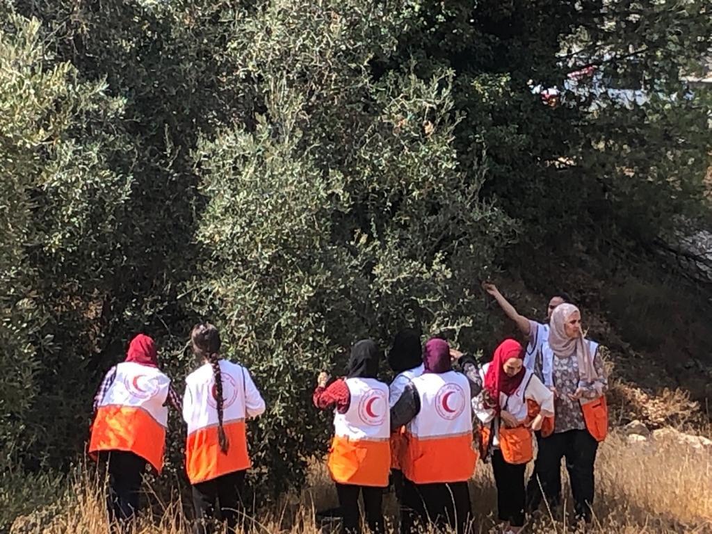 القوات الاسرائيلية تمارس التخويف لمنع المزارعين من الوصول إلى أراضيهم وقطف الزيتون في منطقة رابود المتاخمة لمستعمرة عتنئيل جنوب الخليل-5