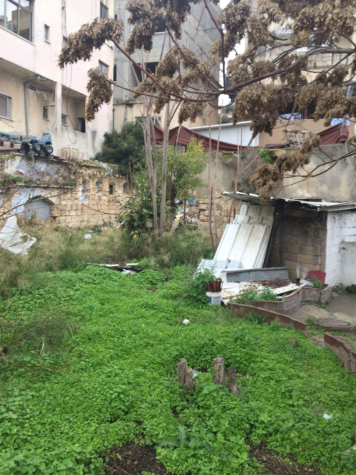 الناصرة: البلدية تقوم بتنظيف أرض الوقف بالحي الشرقي-3