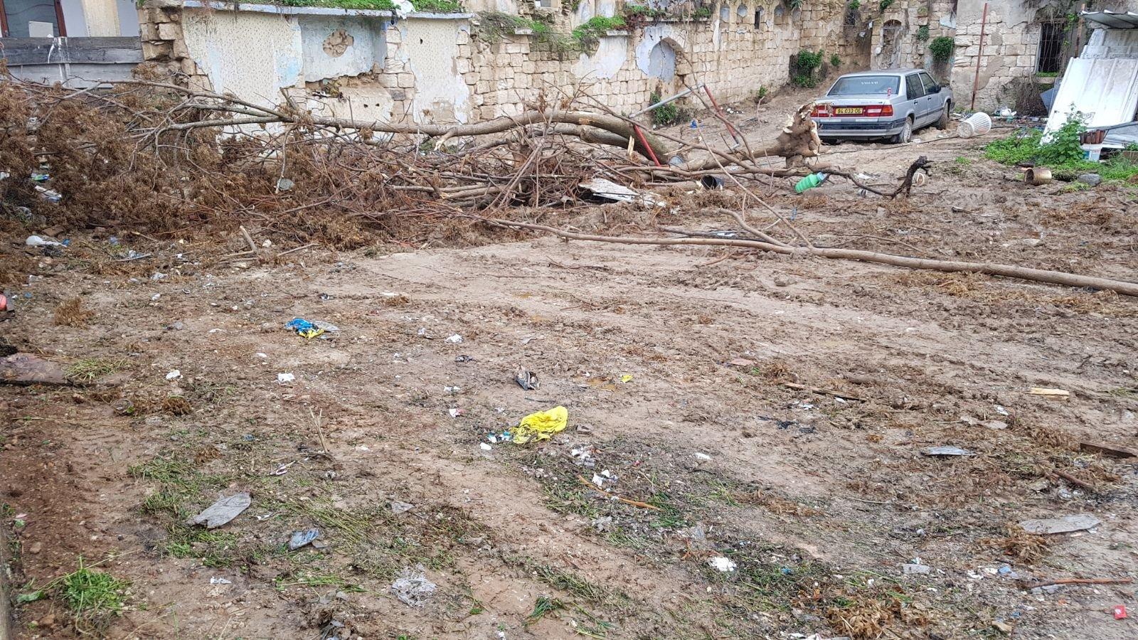 الناصرة: البلدية تقوم بتنظيف أرض الوقف بالحي الشرقي-8