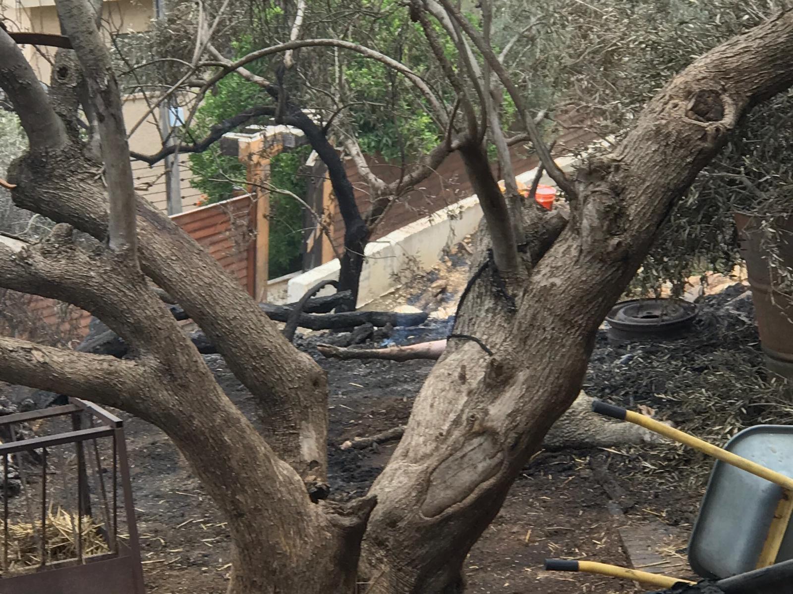 بالصور- أضرار كبيرة بالأملاك في عرعرة بسبب الحريق ومطالبات بتعويض الأهالي