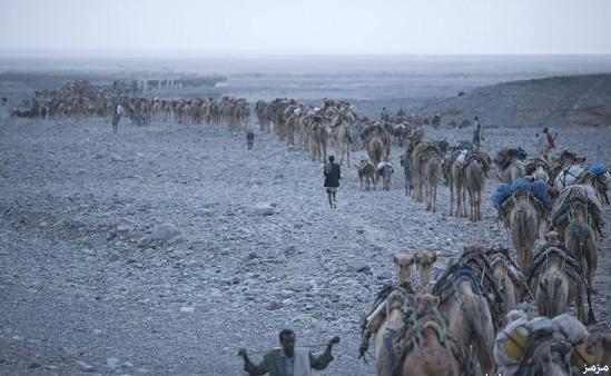 صور من صحراء داناكيل التي توفيّت فيها الطالبة آية نعامنة .. أقسى مكان على وجه الأرض