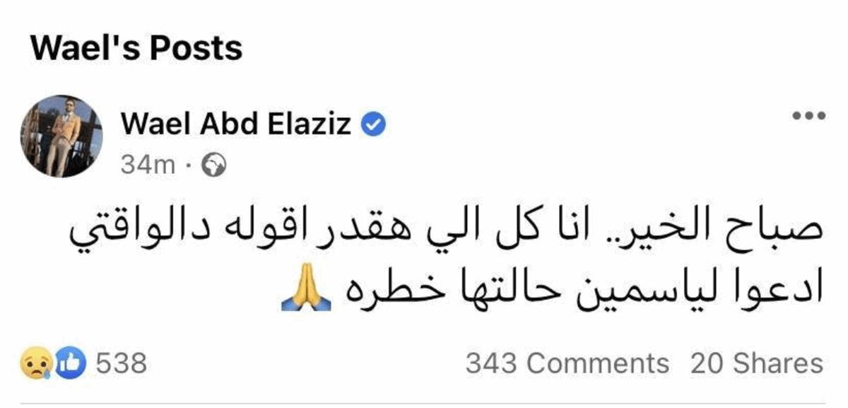 معلومات متضاربة: إزالة ورم من الرحم أم خطأ طبي؟ شقيق ياسمين عبد العزيز يكشف حالتها-0