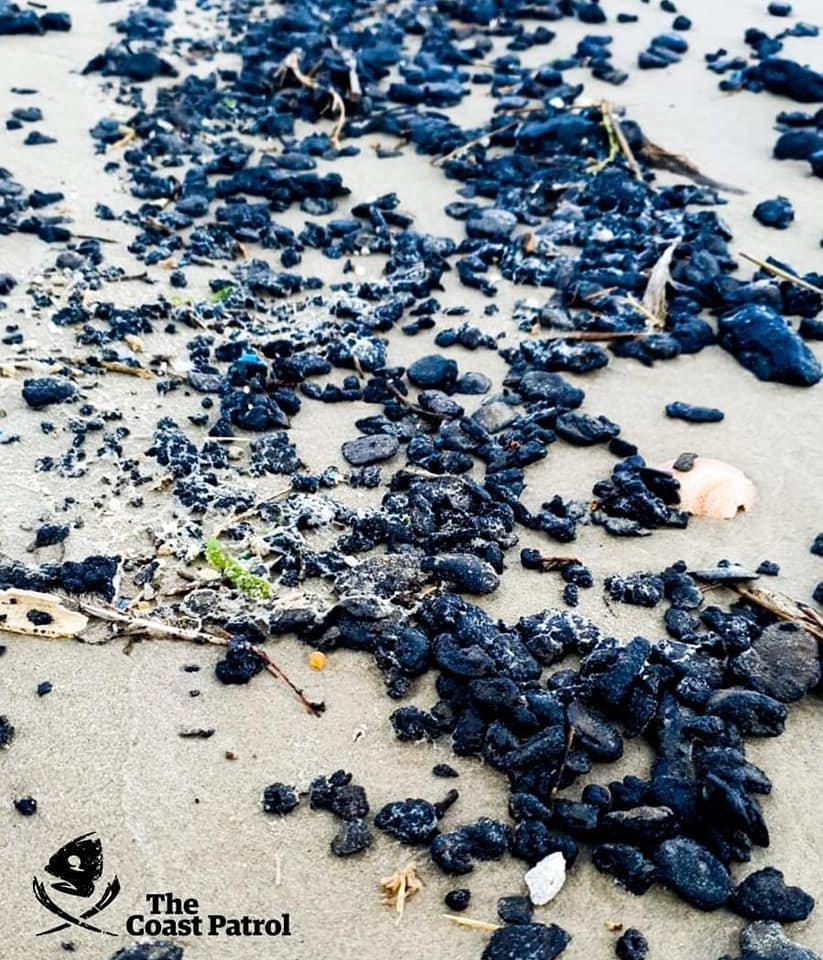 مخطط تلويثي للبيئة بين شركات رؤوس الأموال واقطاب حكومية يزهق عدد من الأرواح ويلوث المياه الزرقاء