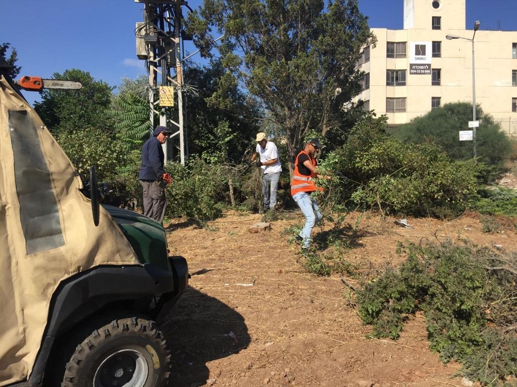 الناصرة: قسم الصيانة وطواقم من قسم الاعمال الخارجية بأعمال تنظيف