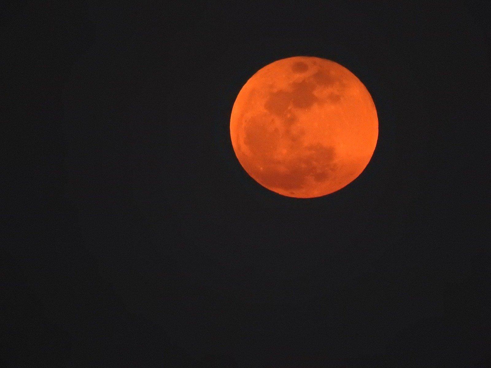 بالصور:  القمر الدموي الكبير في سماء بلادنا
