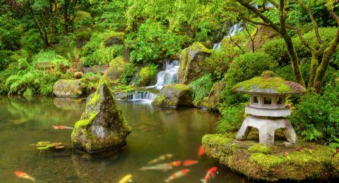 تصاميم حدائق يابانية فيها الكثير من الجمال والروعة!