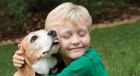 كيف تؤثر الحيوانات المنزلية على أطفالك؟